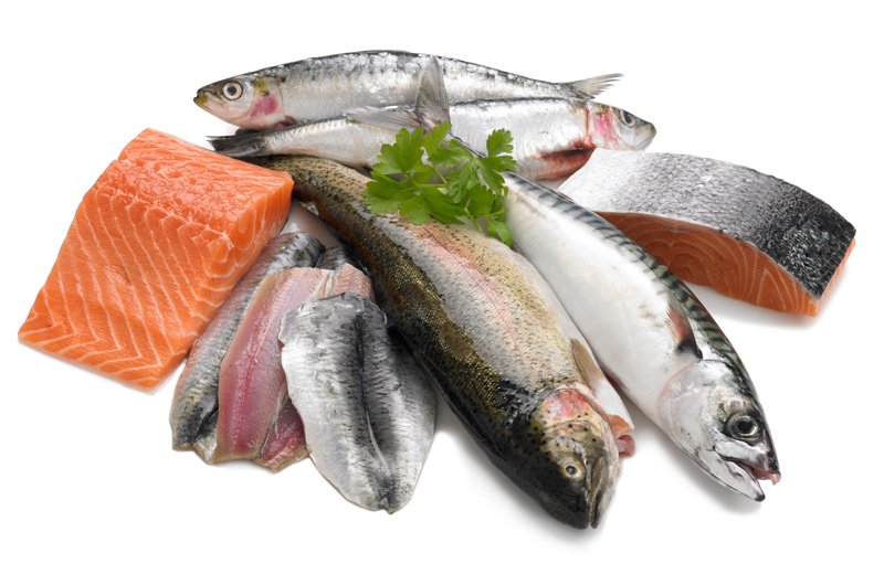 Eat Oily Fish Live Longer Cyber Gazing