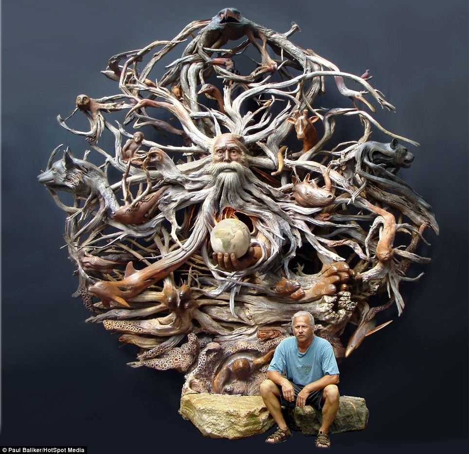 Driftwood Sculpture Cyber Gazing