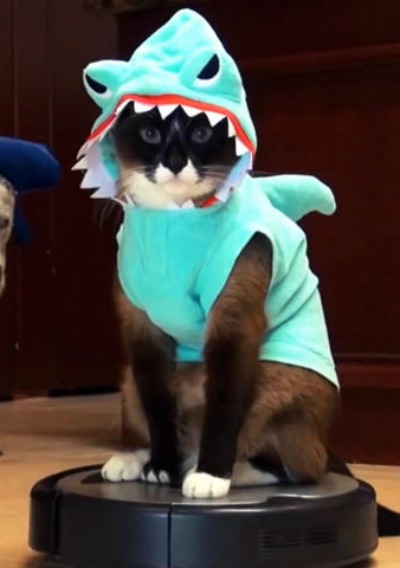 Gimilife Pet Costume, Pet Shark Costume Outfit, Halloween pet costumes Pet Pajamas Clothes Hoodie Coat For Dogs and Cats, Autumn and Winter (M).
