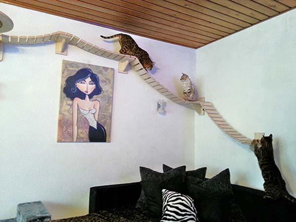 cat heaven furniture cyber gazing. Black Bedroom Furniture Sets. Home Design Ideas