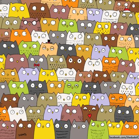 owls-1024x1024