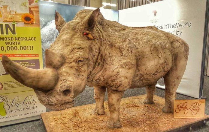rhino-cake-696x442.jpg
