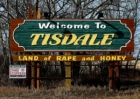 tisdale-the-land-of-rape-and-honey