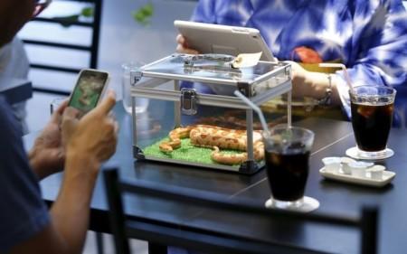 Snake-Cafe-in-Tokyo-3
